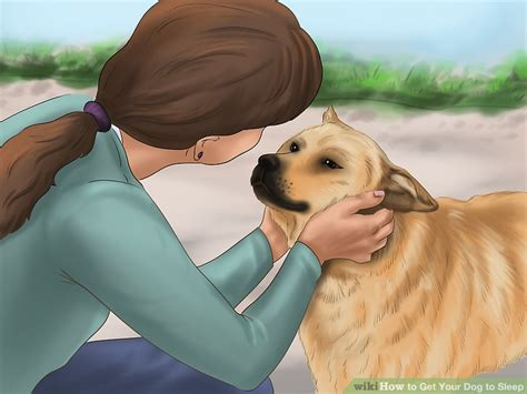 how to make puppy sleep how to get your to sleep 8 steps with pictures wikihow