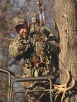 types of tree stands advanced tree stand strategies