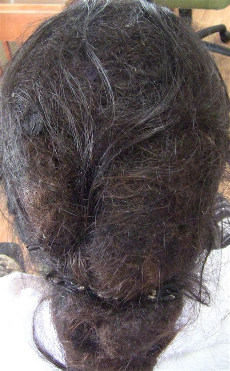 Hair Matted by Matted Hair Extensions Pictures To Pin On