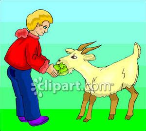 boy feeding a goat royalty free clipart picture