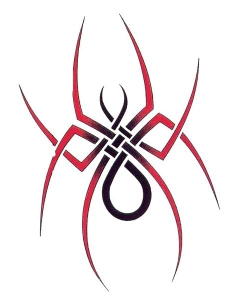 spider with slim legs tribal tattoo tats pinterest