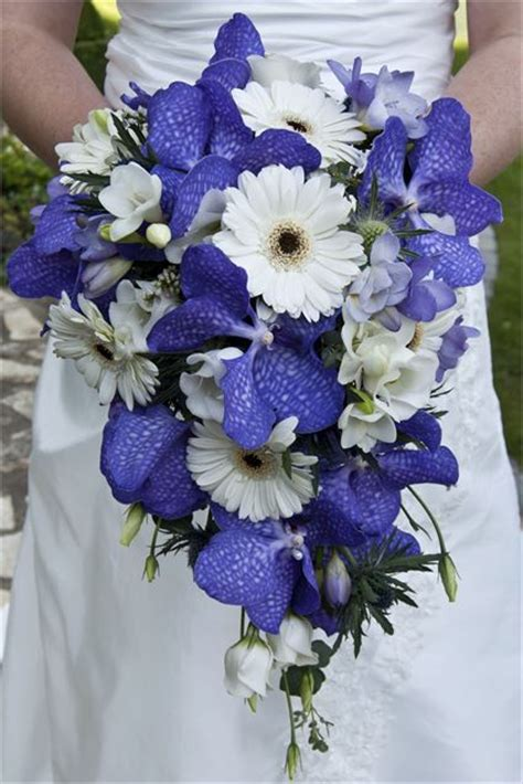 Wedding Bouquet Violet Roses by Violet And White Bouquet Hitched Co Za