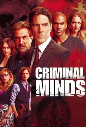dramanice criminal minds watch criminal minds season 8 watchseries