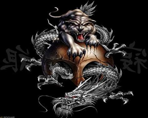 yin yang dragon tattoo tattoo collections