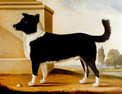 english historical fiction authors newfoundlands lord - Boatswain A Dog