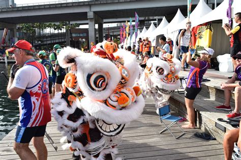 cny boat show 2017 city of sydney dragon boat festival cny17 chinese
