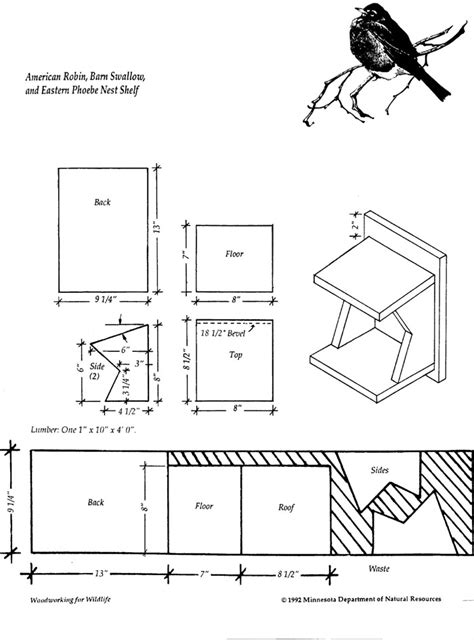 robin bird house plans find house plans