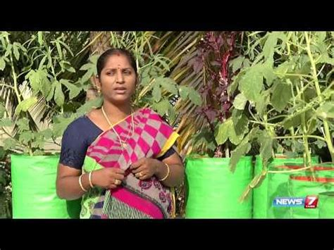 Kerala Kitchen Garden by How To Prepare Pesticide For Organic Vegetables For Your Garden Poovali News7 Tamil