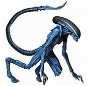 Alien 3 Video Game Dog Action Figure  ThinkGeek