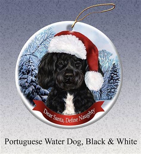 raining cats and dogs portuguese water dog dear santa