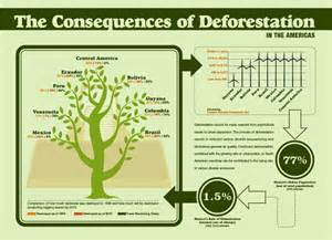 deforestation and its consequences in america infographics graphs net