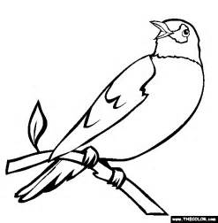 what color is a robin perched robin coloring page free perched robin