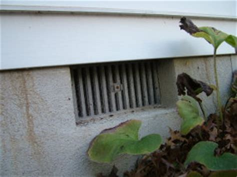 basement crawl space ventilation rodent removal atlanta rodent proofing your atlanta home