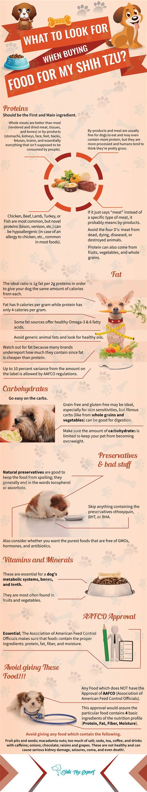 recommended food for shih tzu how to find the best food for shih tzu