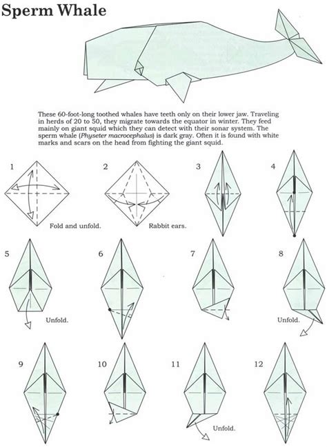 How To Make Origami Whale - welcome to dover publications origami