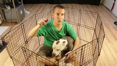 diy puppy pen diy pens photo albums homes interior design ideas