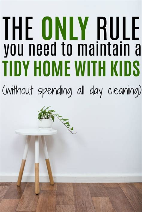tidy home cleaning 372 best clean it images on pinterest cleaning hacks
