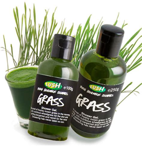 Lush Grass Shower Gel by Get Your On These Lush Goodies Vegan