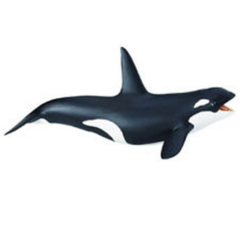 killer whale toys r us image gallery killer whale toys