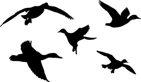 printable duck stencils rubber duck silhouette cliparts co