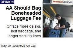aa baggage fee lost baggage news stories about lost baggage page 1