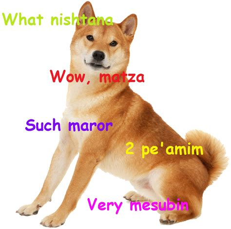 What Breed Is Doge Meme - 300 ways to ask the four questions fun and educational