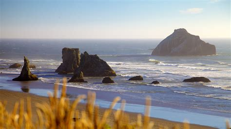 Of Oregon Find Oregon Coast Pictures View Photos Images Of Oregon Coast