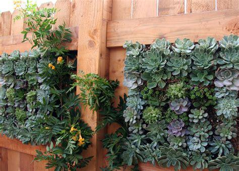 succulent wall planters mediterranean landscape