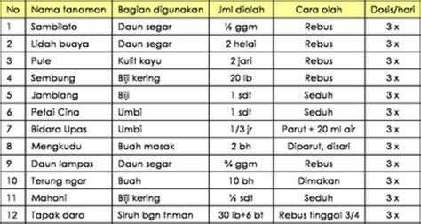 Daftar Obat Cacing Kucing lengkap daftar tanaman obat indonesia khasiatnya