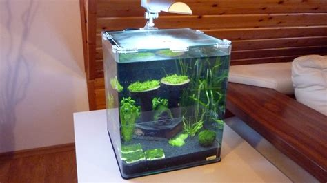 Design Aquascape Testbericht Dennerle Nano Cube Complete Plus 30 Liter
