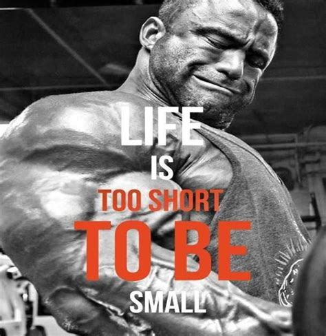 popular bodybuilding quotes and sayings bodybuilding wizard best bodybuilding quotes quotesgram