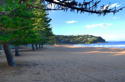 on the beach whale beach manly northern beaches australia