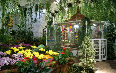 Butterfly Gardens by Butterfly Garden Images Search