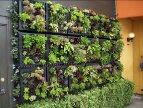 vertical garden design adding natural look to house