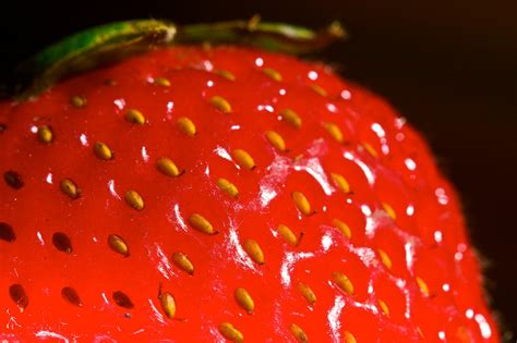 3 fruits with seeds on outside why do strawberries their seeds on the outside
