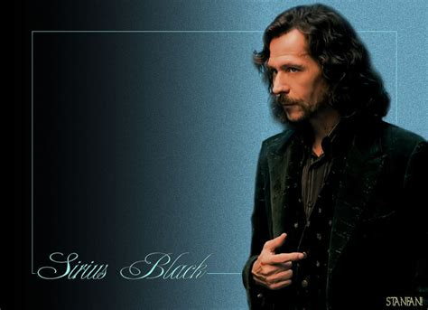 sirius black sirius black images sirius black hd wallpaper and background photos 7017007