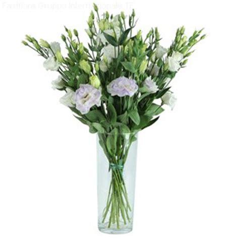 fiori stelo lungo faxiflora consegna fiori a domicilio regali per pasqua