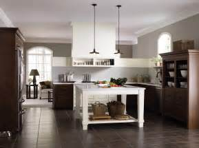 Kitchen Design Home Depot by Home Depot Kitchen Design Review Home Designs Project
