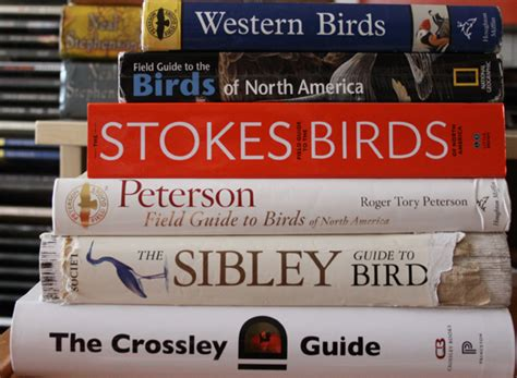 10 000 birds review of the crossley id guide eastern birds