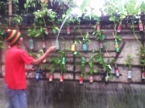 simple vertical garden ideas small vegetable garden 1