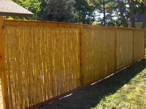 backyard x scapes reed fencing bamboo cedar fence after installing the cedar posts