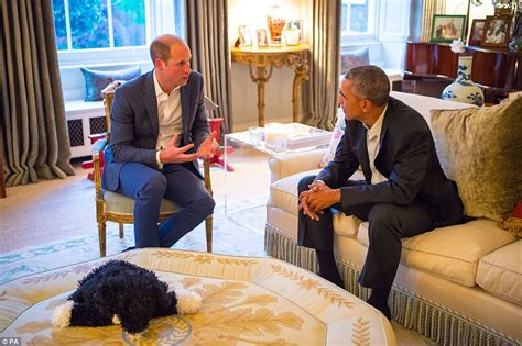 Baby Dress Plais Drees Bayi prince george meets barack obama in his dressing gown and