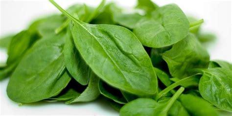 alimenti ricchi magnesio alimenti ricchi di magnesio ecco quali sono