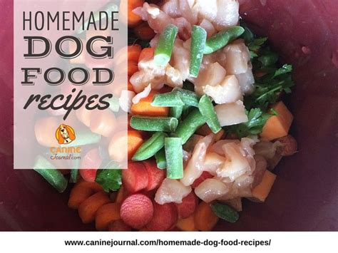 food for diabetic dogs 17 best images about nutrition on best puppy food for dogs and