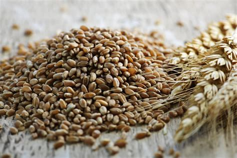 made with whole grains claim the shocking list of health foods that aren t healthy at