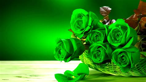 Hd Rose Flower Wallpapers For Android