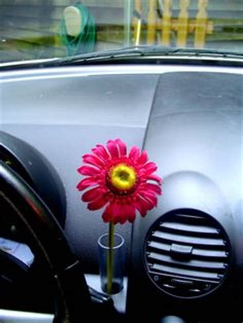 Vw Beetle Vase by Vw Beetle On 25 Pins