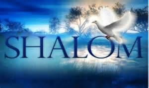 shalom shalom joel solliday