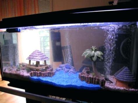 decor aquarium fait maison aquarium pour maison ventana