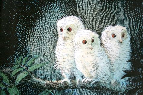 owl babies owl babies by martin waddell and patrick benson